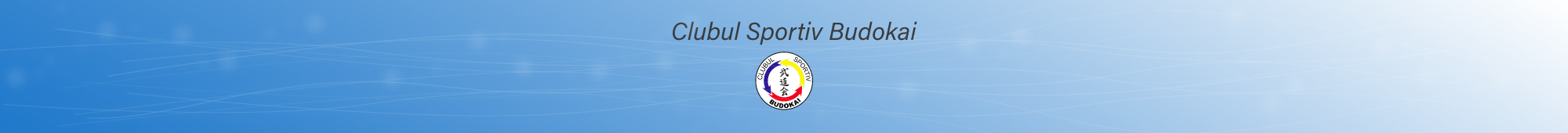 Clubul Sportiv Budokai